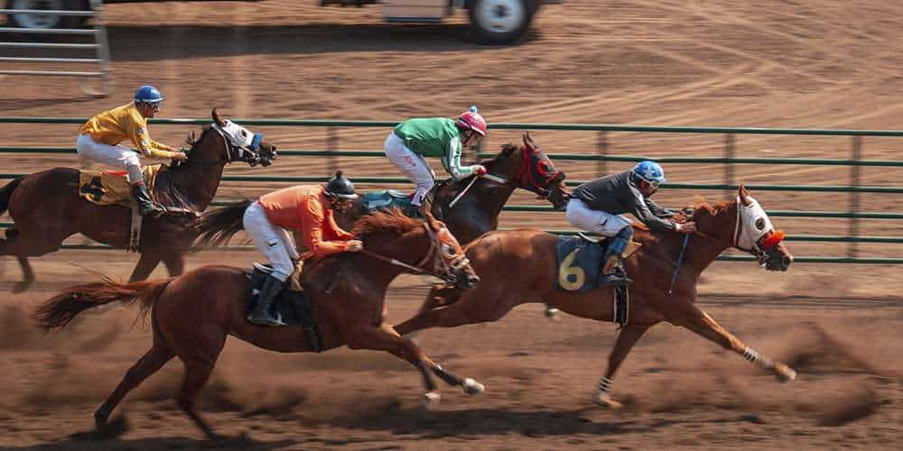 Horse Racing Betting Rules and Statistics